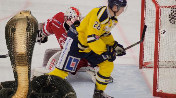"""Kobran"" Holm överlistar Trojakeepern. Foto: David Nilsson Hamne"